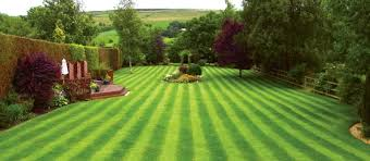 beautiful lawns would mean great turf care